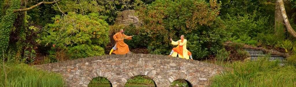 shaolin monks at monart wexford