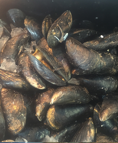 Mussels from Mylers fish shop, Wexford Monart Food Blog